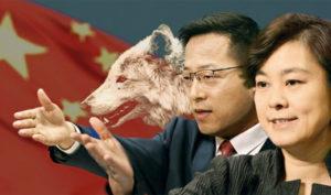 Phát ngôn viên Bộ Ngoại giao Trung Quốc Triệu Lập Kiên và Hoa Xuân Oánh nổi tiếng với kiểu ngoại giao chiến lang.